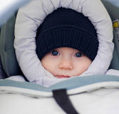 Winter baby Stock Images