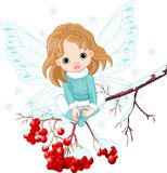Winter Baby Fairy. Sitting on Ash Tree Branch Stock Photography