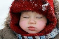 Winter baby sleeping Royalty Free Stock Image