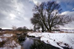 Winter, Bach, Wintry, Snow, Water Stock Photos