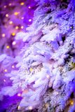 Winter backdrop with tree and lights stock photos