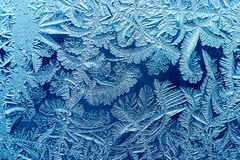 Winter background. Window frost in a could winter Stock Image