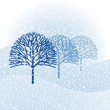 Winter background Stock Photos