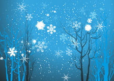 Winter background Stock Photography