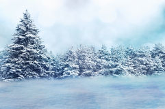 Winter background Royalty Free Stock Photo