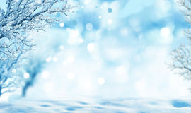 Winter background. Beautiful winter landscape with tree Royalty Free Stock Photos