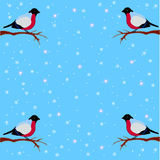 Winter background with bullfinches on snow background. Sitting on a branch Vector Illustration