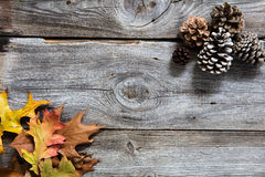 Winter background with colored leaves, fir cones on old wood. Winter decor with colored dead leaves, fir cones on old wood background for symbols of sustainable stock image