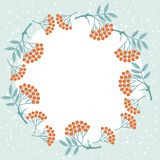 Winter background design with stylized rowan Stock Photography