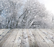 Winter background with falling snow Royalty Free Stock Photos