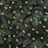 Winter background of fir branches. Adorned with gold baubles. Christmas card. Top view. Xmas congratulations stock photo