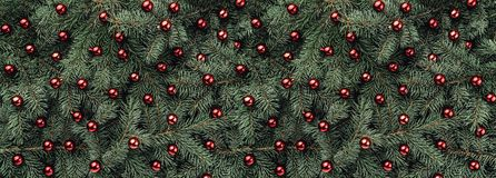 Winter background of fir branches. Adorned with red baubles. Christmas card. Top view. Xmas congratulations royalty free stock photo