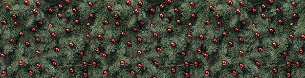 Winter background of fir branches. Adorned with red baubles. Christmas card. Top view. Xmas congratulations stock images
