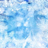 Winter background of fir branches. Christmas vector background with fir tree branches frame Stock Photos