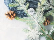 Winter background with fir tree branches and pine cones. Christmas winter gray background with fir tree branches, pine cones, baubles and snow. New year greeting Royalty Free Stock Images