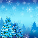 Winter background with fir tree and snowflakes Stock Images