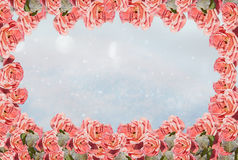 Winter background with frame of frosty roses stock photos