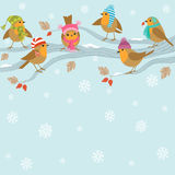Winter background with funny birds. Stock Photo