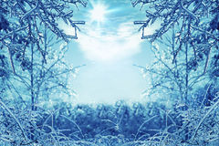 Winter background with icy branches in the foreground Royalty Free Stock Photos