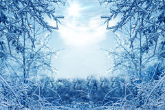 Winter background with icy branches in the foreground Royalty Free Stock Photo