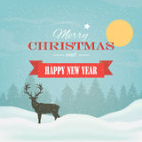 Winter background, landscape. Winter landscape with spruce tree and snowfall Royalty Free Stock Photos