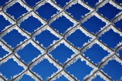 Winter background with a lattice covered by ice crystals Stock Photo