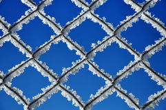 Winter background with a lattice covered by ice crystals Royalty Free Stock Photo