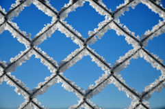Winter background with a lattice covered by ice crystals Stock Image