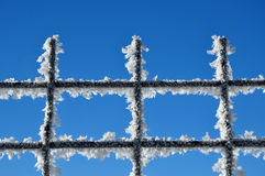 Winter background with a lattice covered by ice crystals Stock Images