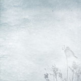 Winter background with little bird Royalty Free Stock Photo