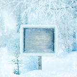 Winter background, scene, landscape. Wooden sign in the winter f Stock Photo