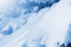 Snow-covered branches of fir trees royalty free stock photo