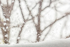 Winter background with snow-covered view  outside the window Royalty Free Stock Image