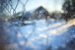 Winter background with snow Royalty Free Stock Images