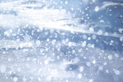 Winter background. Stock Photography