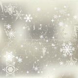Winter background with snowflakes Stock Images