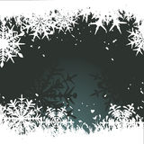 Winter background with snowflakes Royalty Free Stock Image