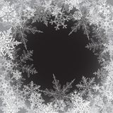 Winter background, snowflakes - vector illustration Royalty Free Stock Images
