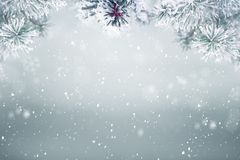 Winter background snow stock images