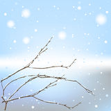 The winter background thread Stock Photo