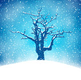 Winter background with tree Stock Image