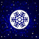 Winter background. Vector winter background in blue Royalty Free Stock Image