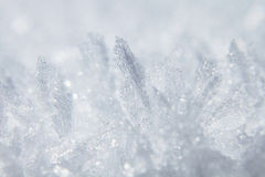 Winter background with white frost and ice