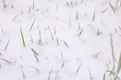 Winter backgrounds Stock Photos