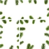Winter backgrounds with fir branches. White winter backgrounds set with fir branches. Vector Christmas illustration Royalty Free Stock Images
