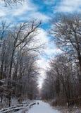Winter Backroad Stockfotos