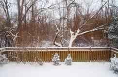 Winter Backyard Royalty Free Stock Photos
