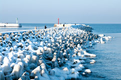 Winter Baltic jetty Stock Images