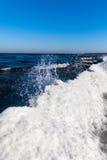 Winter at Baltic sea. Stock Photos