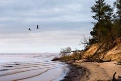 Winter at Baltic Sea in Riga. Latvia Royalty Free Stock Photography
